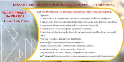 Formação Internacional Mentoria Sistêmica Módulo I SBMS & IMA