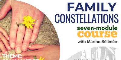 Family Constellations - Seven Module Course