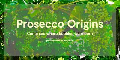 Prosecco Origins Wine Tour