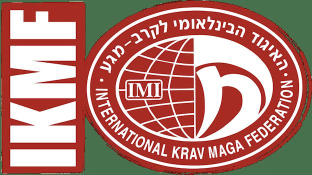 Phoenix Krav Maga Beginners Class