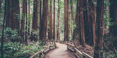 Living Life on Purpose October - 1440 Multivesity Nestled in the California Eedwoods near Santa Cruz