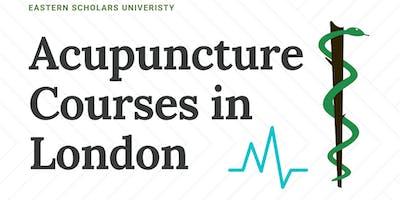 Acupuncture Courses London