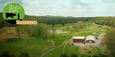 Sundays at The Gentle Barn – Tennessee