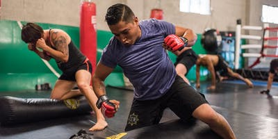 Free MMA Fitness