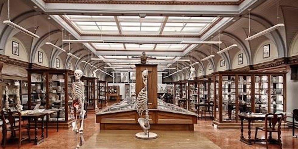 Anatomical Museum Doors Open Day 2018 Tickets Multiple Dates