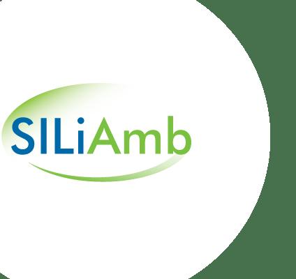 Sessões de esclarecimento SILiAmb