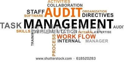 Internal Audit 301: Internal Audit Manager - Salt Lake City UT - Yellow Book, CIA & CPA CPE