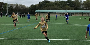 AFC Leyton SSE Wildcats Free Girls Football Sessions -...