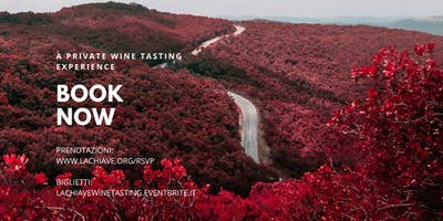 Wine Tasting & Live Music | Terrazze Romane
