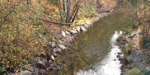 San Francisquito Creek Water Quality Monitoring