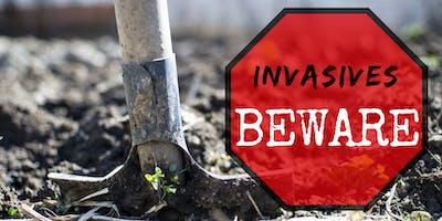 Invasives Beware