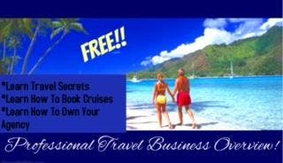 FREE!!-TRAVEL AGENT BUSINESS OVERVIEW (SAN AN