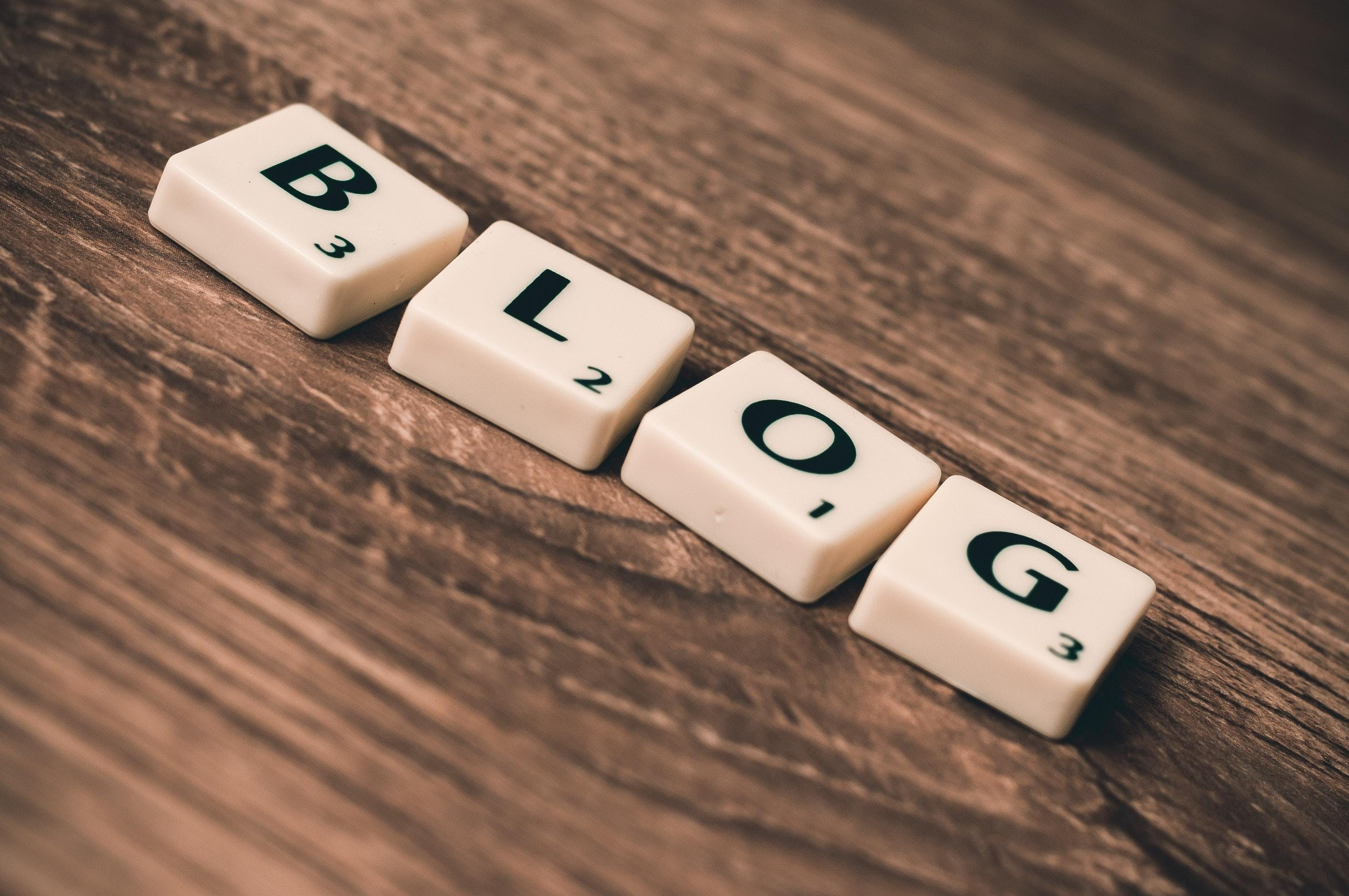 VOICES: YOUTH BLOGGING PROGRAM - for newcomer