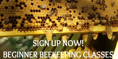 2-Day Beginner Beekeeping Class - January 19-20th, 2019
