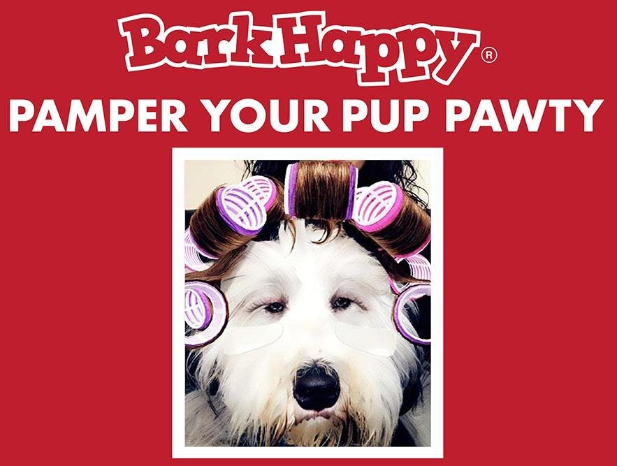 BarkHappy Phoenix: Pamper Your Pup Pawty Benefiting Arizona Small Dogs Rescue!
