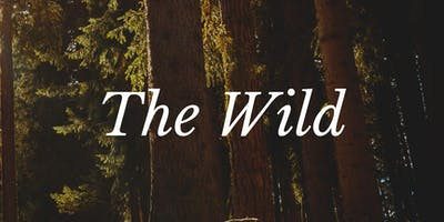 The Wild - The Firepits