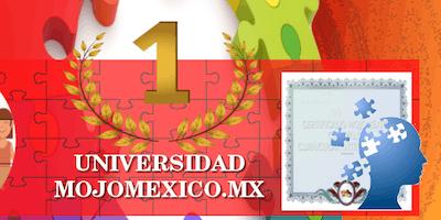 Curso Magento Instalador Puebla