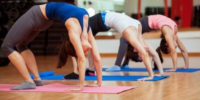 Kostenlose Probestunde Traditioneller Yoga Kurs