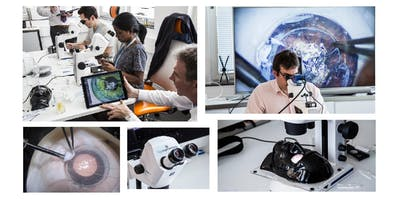 Surgical Skills Training - Advanced Corneal Skills, Cambridge