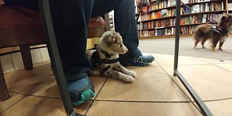 Training Class - Puppy Ambassadors tickets