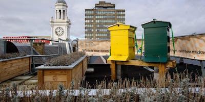 Visit London Met bees