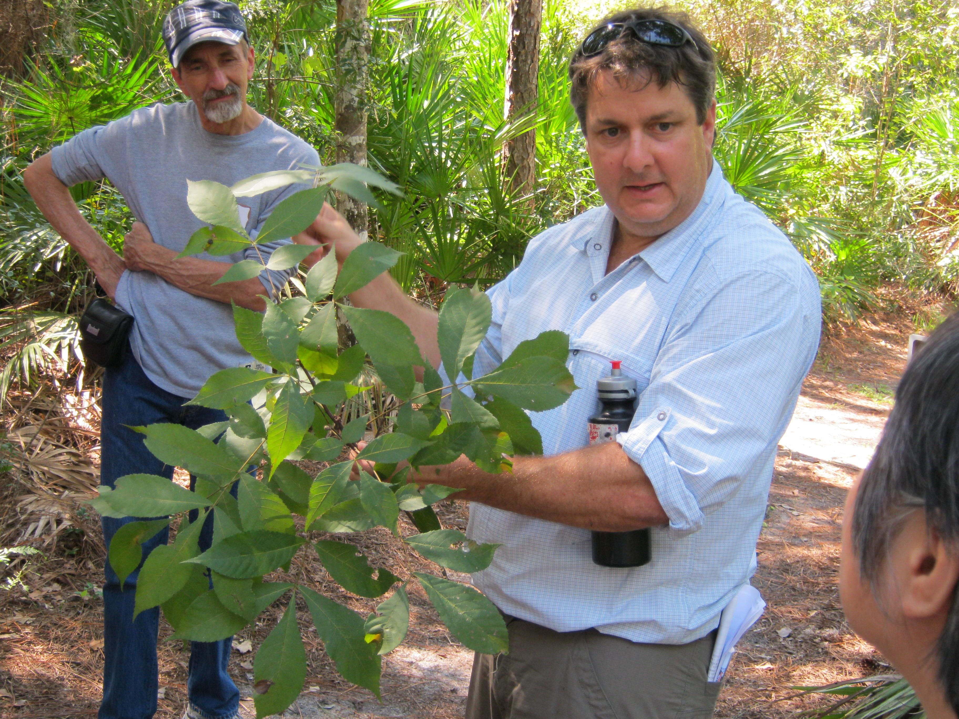 Forest Stewardship Field Day: Forest Plant Id