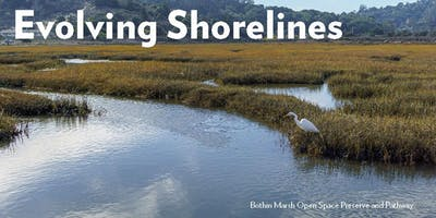 Evolving Shorelines: New Normal for High Tide Kayak Tour