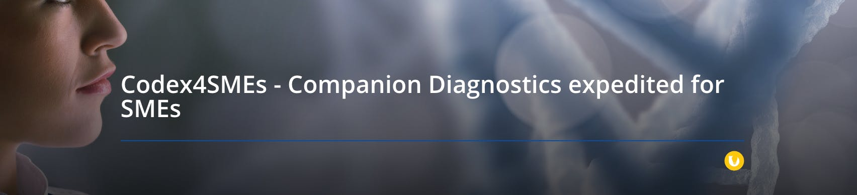 Companion Diagnostics Codex4SMEs Roadshow