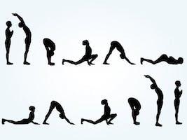 Yoga Taco Mosa