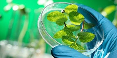 Bioeconomy Dialogues: Progetti green dal territorio e oltre