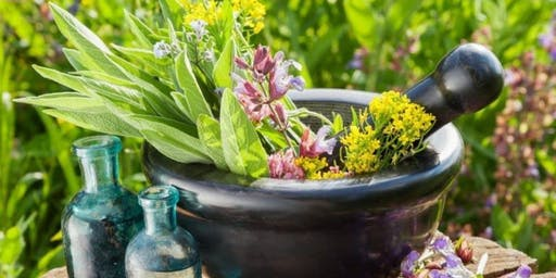 Herbal Home Remedies – Natural Medicine to boost your immune system