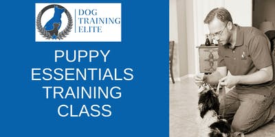 Puppy Essentials Training Class (4 weeks)