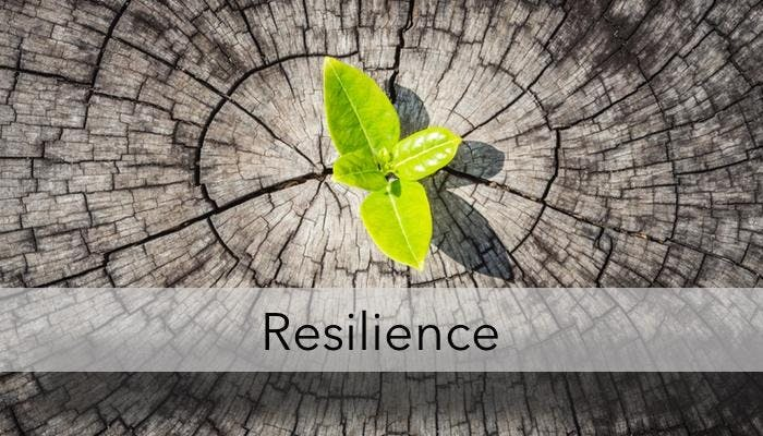 Open your Heart!  Yoga for Resilience
