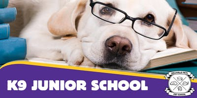 K9 Junior School 4 week course