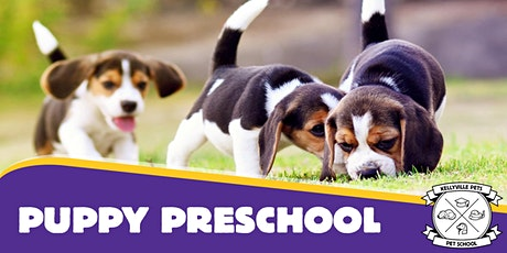 Puppy Preschool 4 week course tickets