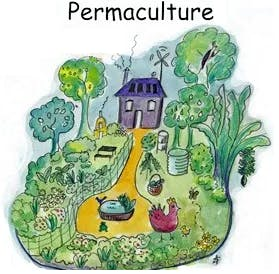Discover Permaculture
