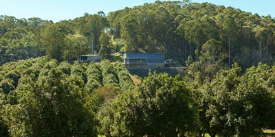 Cape Byron Distillery & Rainforest Tour (October \