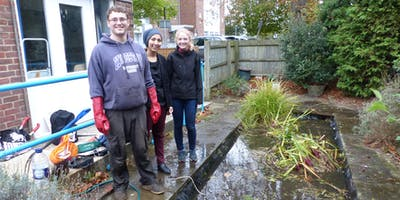 Pond Maintenance with the Kingston Biodiversity Action Group