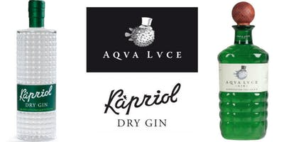 Masterclass gin Aqva Lvce e Kapriol Dry gin (Beniamino Maschio)