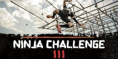 NINJA CHALLENGE 3
