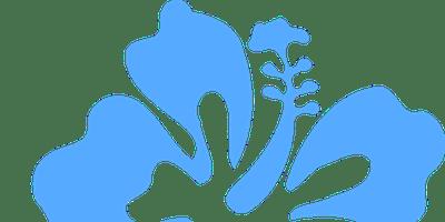 Spring Break Camp 2019 - Week of 4/1/19