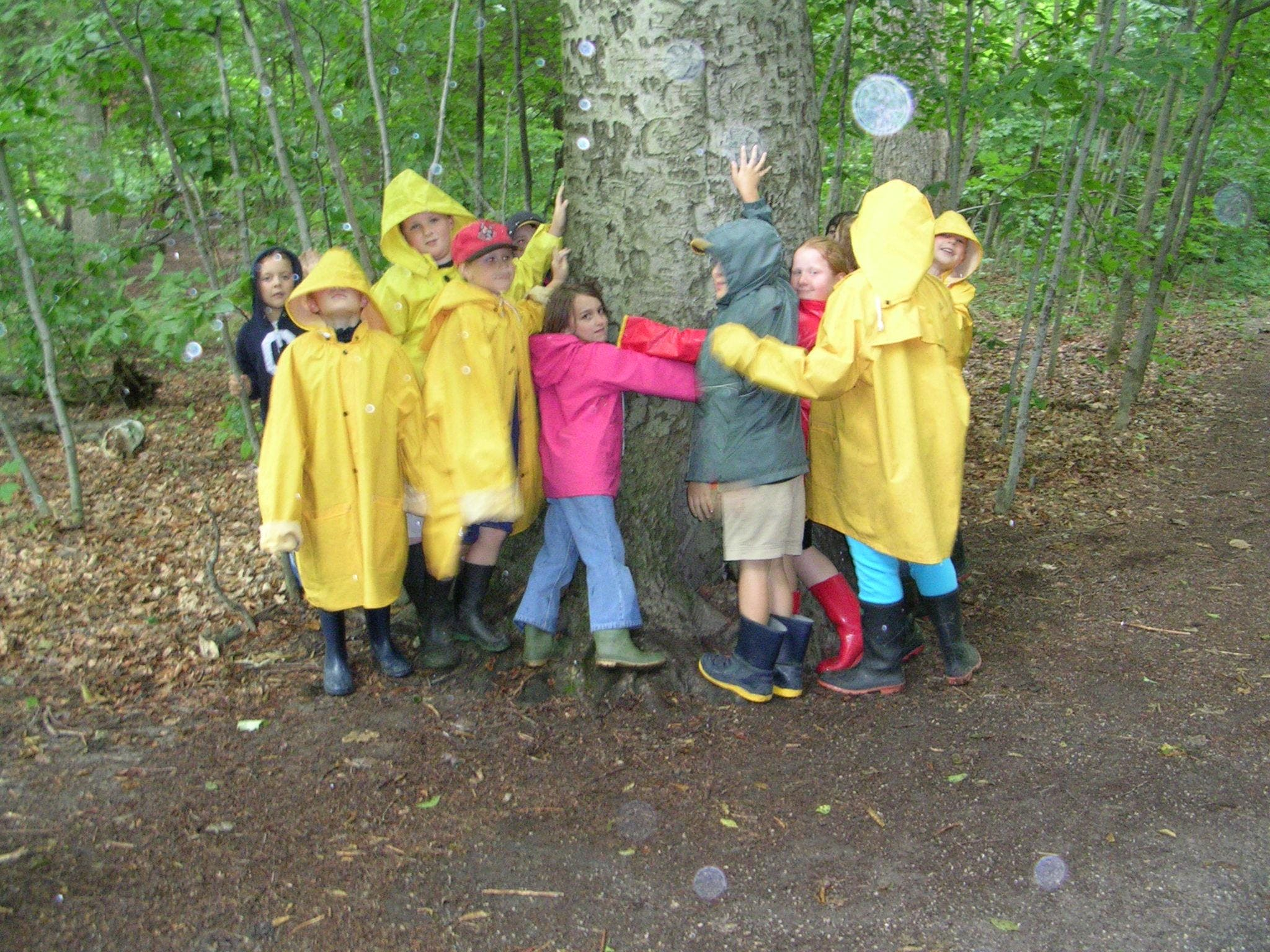 PD Day Camps at Apps' Mill Nature Centre (Fall 2018)