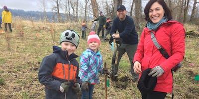 Steigerwald Lake National Wildlife Refuge Volunteer Planting-Monday, MLK Day of Service-January 21