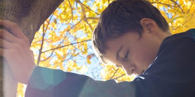 Trust-Based Relational Intervention (TBRI) Foster Parent Training - New Horizons - Abilene, TX - 3/2019