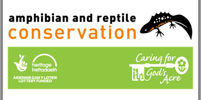 Amphibians and Reptiles with John Wilkinson
