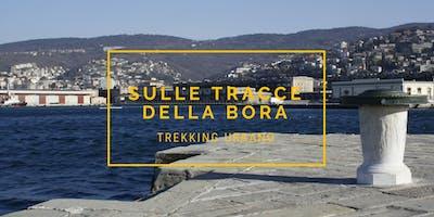 Sulle tracce della Bora - Trekking urbano speciale Barcolana