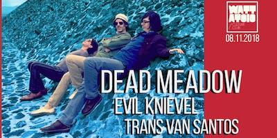 Dead Meadow//Evil Knievel//Trans Van Santos Live