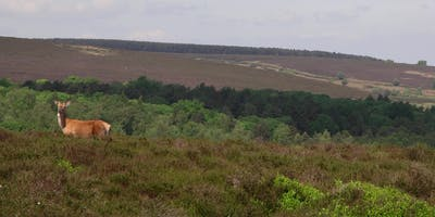 Volunteer Work Day: Blacka Moor Nature Reserve