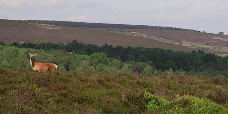 Volunteer Work Day: Blacka Moor Nature Reserve tickets