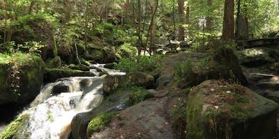 Volunteer Work Day: Wyming Brook & Fox Hagg Nature Reserves